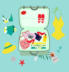 with a suitcase and accessories vector image