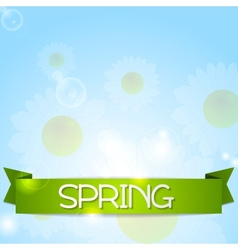 Spring design Camomiles and ribbon vector image vector image