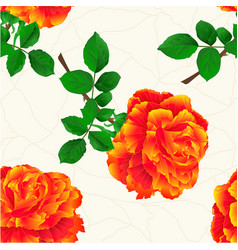 seamless texture flower orange rose stem vintage vector image