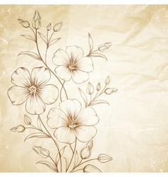 Linum flower vector image vector image