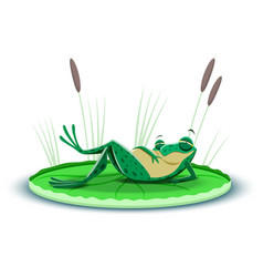 a gorged frog resting on a leaf water lily vector image