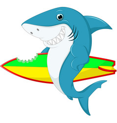 Cute shark surfing cartoon vector