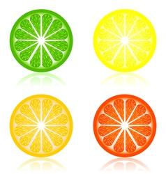 Icon a citrus vector