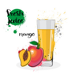mango juice fresh hand drawn watercolor fruits and vector image