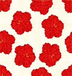 Seamless texture red hibiscus flower chinese rose vector