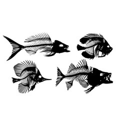 Skeletons of fishes vector