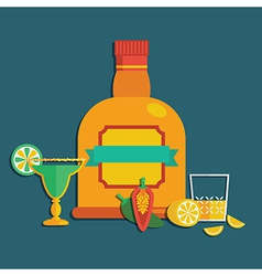 tequila decoration vector image