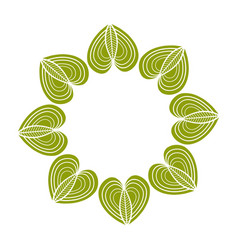 green floral mandala ornament decoration natural vector image