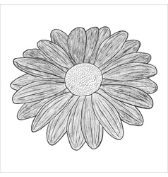 black and white of a flower vector image