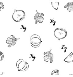 calligraphy monochrome fig nature pattern vector image