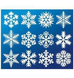 Collection snowflakes vector