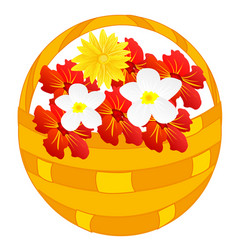 flower in basket vector image vector image