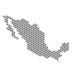 Grey hexagon mexico map vector