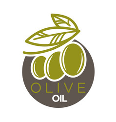 Olive oil logo design of vector