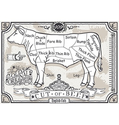 Vintage Pastel Page of English Cut of Beef vector image vector image