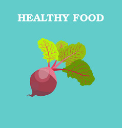 Beetroot flat beetroot logo beetroot icon vector