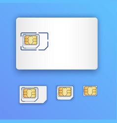 Blank realistic sim card set of sim cards full vector