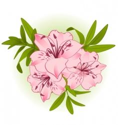 Bouquet of flowers vector