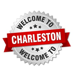 Charleston 3d silver badge with red ribbon vector