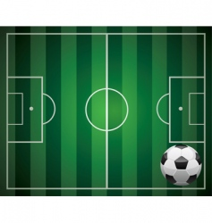 soccer ball and the field vector image