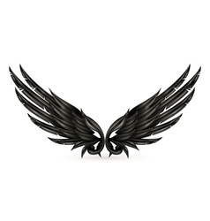 Wings black vector image