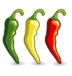 mexican hot chili peppers vector image vector image