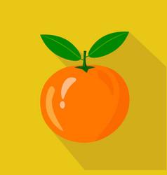 orange flat icon vector image vector image