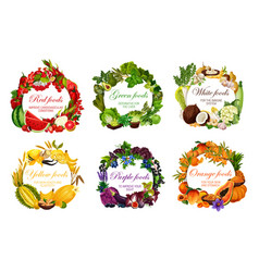 Color diet healthy vegetarian food nutrition vector