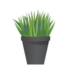 Grass with pot vector