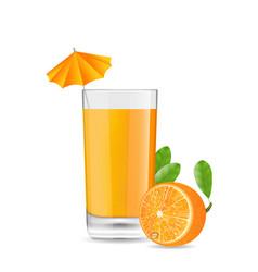 Orange Cool Cocktail vector image