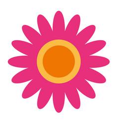 pink flower decoration ornament natural vector image