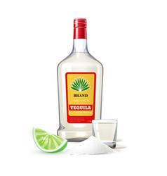 realistic tequila bottle shot lime salt vector image