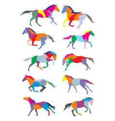 set horses colorful silhouettes vector image