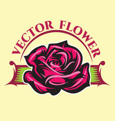 With color rose and vector