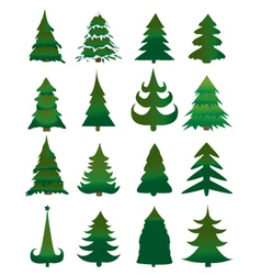 Christmas Pine Trees vector image
