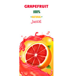 citrus grapefruit vertical banner design packaging vector image