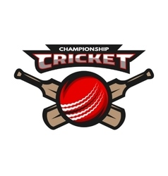 Cricket sports ball and bat vector