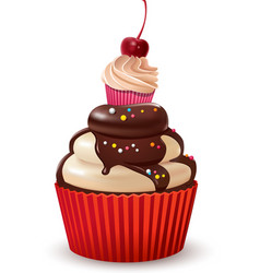 Cupcakes with cherry and chocolate vector image
