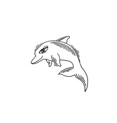 dolphin sketch drawing icon summer themed vector image