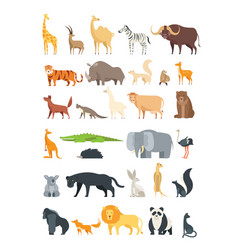 flat african jungle and forest animals cute vector image