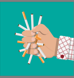 Hand breaks cigarettes vector