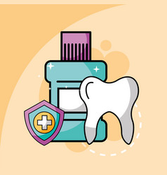 tooth mouthwash and shield protection dental care vector image