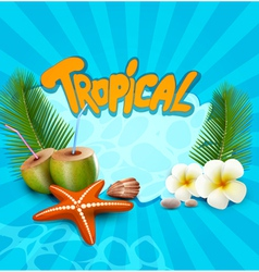 tropical banner with seashells starfish vector image