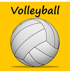 Volleyball-team sport vector image