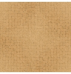 Abstract grunge cardboard seamless texture vector image vector image