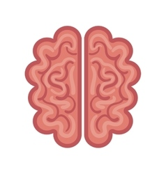 brain cartoon icon graphic isolated vector image