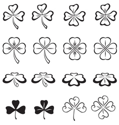 leaves of clover vector image