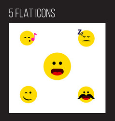 Flat icon gesture set of descant winking wonder vector