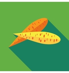 Two carrots icon in flat style vector image