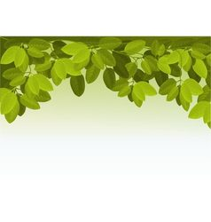 Nature background with ivy leaves vector